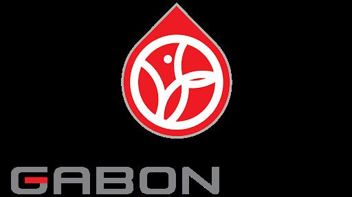GABON OIL COMPANY
