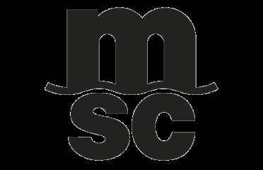 MSC Mediterranean Shipping Company