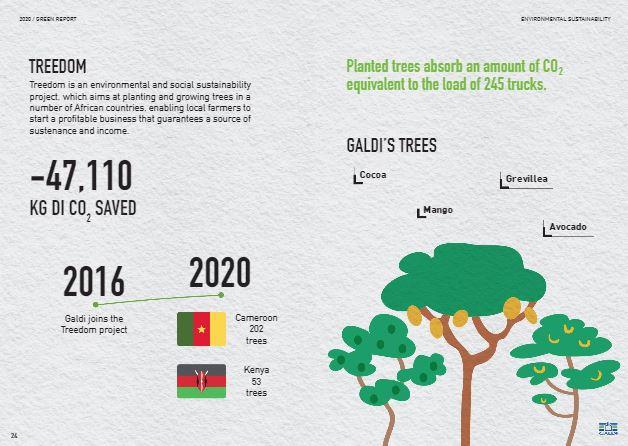 Проект Galdi - Treedom