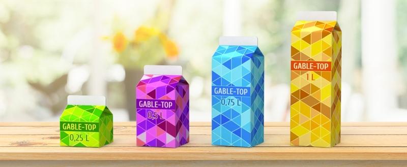 упаковка молочных продуктов DairyTech