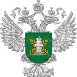 Владимир Сидорчук