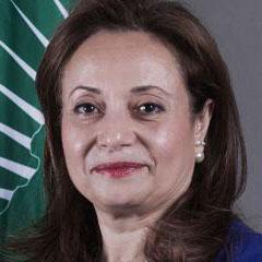 H.E. Dr. Amani Abou-Zeid