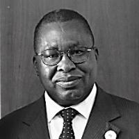 H.E Amb. Albert Mudenda Muchanga