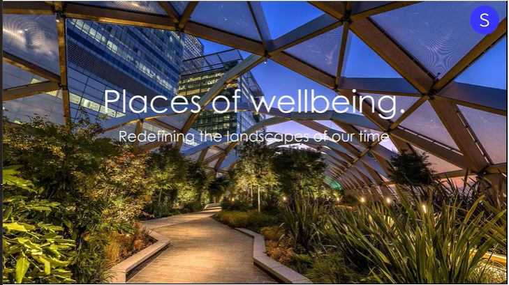 places of wellbeing - Smith
