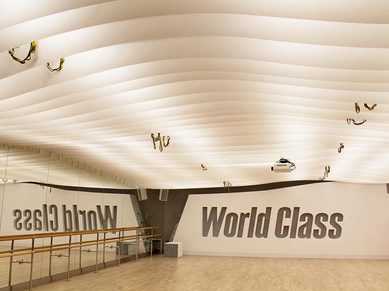 Интерьеры World Class