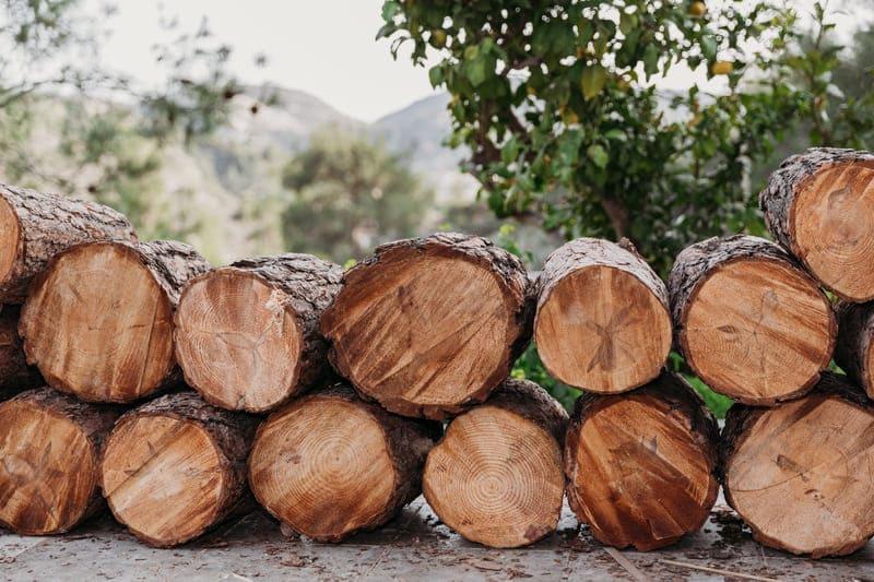 Российский рынок лесозаготовки