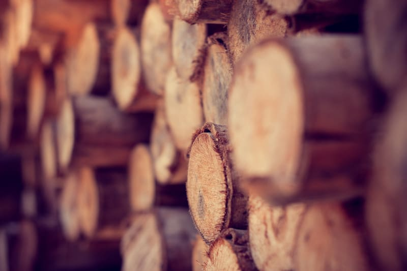 Специализированная лесозаготовительная техника