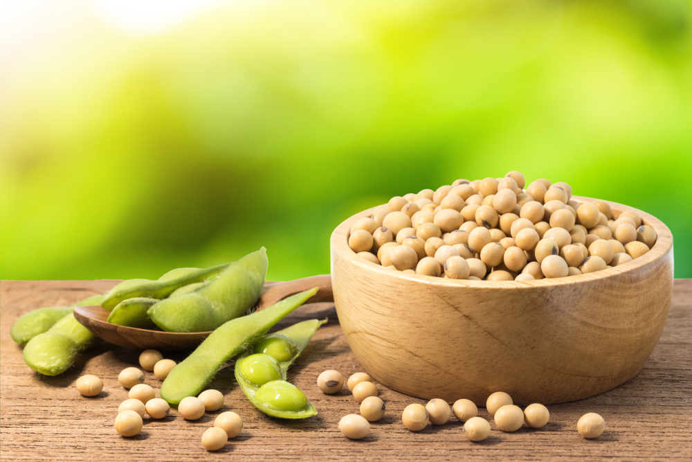 Russia is planning to export more soybeans to China.