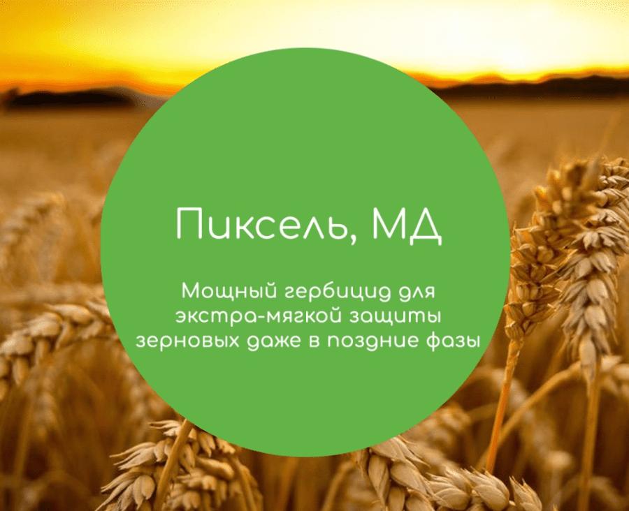 Пиксель Щелково Агрохим Защита посевов пшеницы