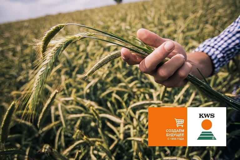 купить семена онлайн, сельскохозяйственная выставка ЮГАГРО 2021