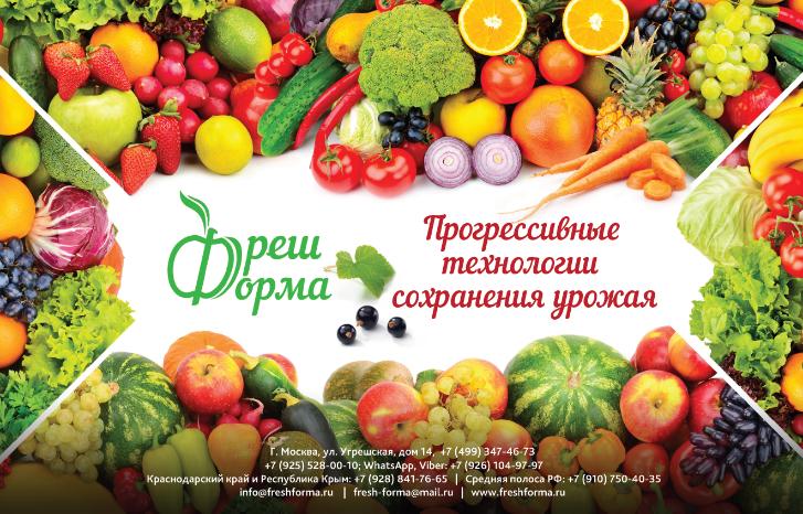 Технология хранения фруктов и овощей