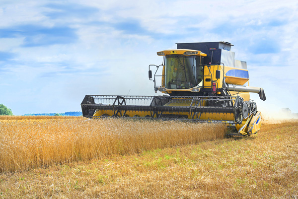 A Russian combine harvester