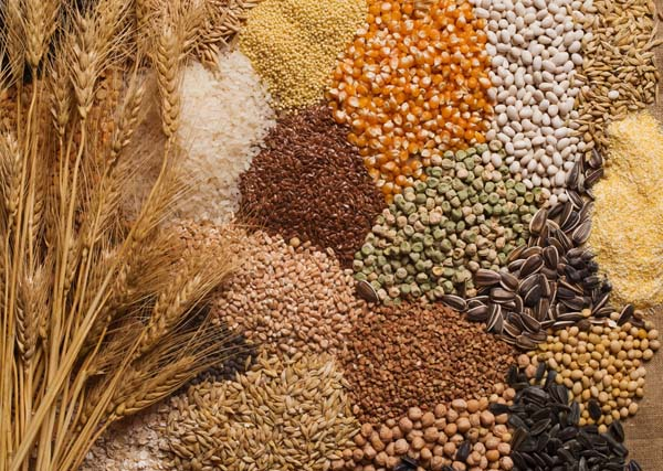 A selection of grains