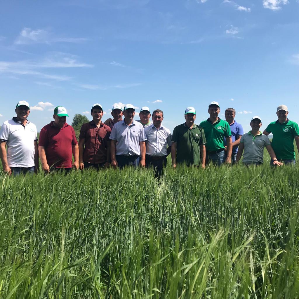комплексная защита зерновых культур